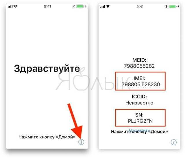 Как проверить iphone на подлинность: проверка айфон на оригинальность по imei и серийному номеру