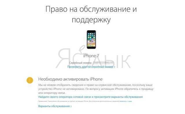 Как узнать, какого года айфон - все способы тарифкин.ру как узнать, какого года айфон - все способы